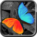 Photo Editor - PhotoWizard Free